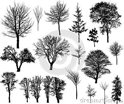 De bomen van de winter