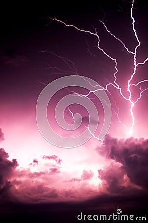 De Boom van de bliksem