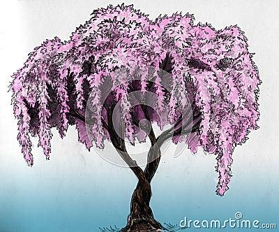 De boom van Sakura - potloodschets
