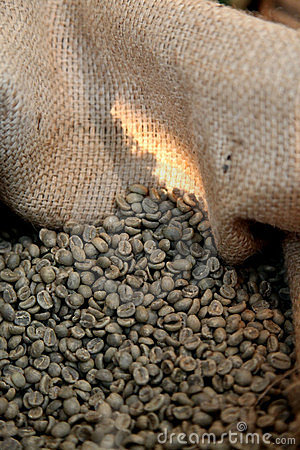 De boon van de koffie
