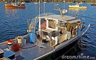 De boot van de zeekreeft op het werk