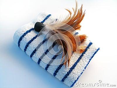 De Borstel van de handdoek en van de Veer