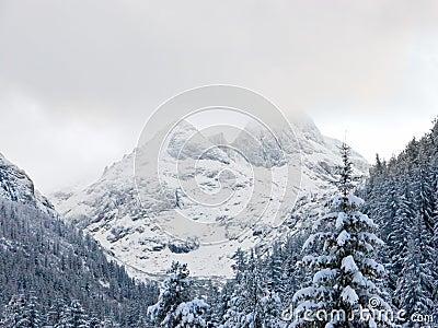 De bovenkant van de berg onder sneeuw