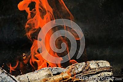 De brand van de opening van een sessie
