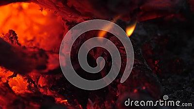 De brandende rode steenkolen van de brand doven met een stroom van water campfire Tong van vlam Vonken die van de brand vliegen stock videobeelden
