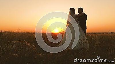 De bruid en de bruidegom koesteren elkaar bij zonsondergang Romantische avond van minnaars op gebied honeymoon De man en de vrouw stock videobeelden