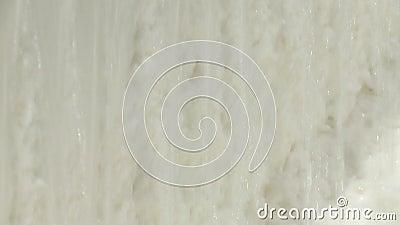 De cellulose van loofbomen wordt gewassen en gebleekt stock video