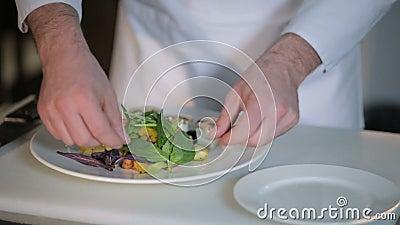 De chef-kok verfraait de salade stock footage