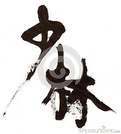 De Chinese kalligrafie van Shaolin