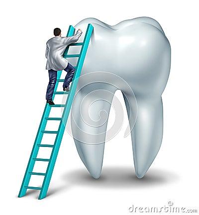 De Controle van de tandarts