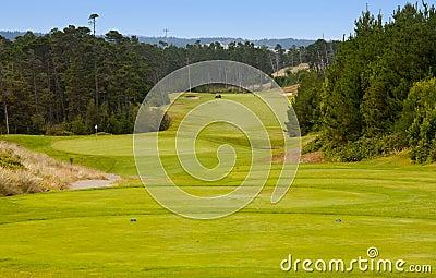 De cursus van het golf