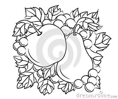 De decoratie van vruchten