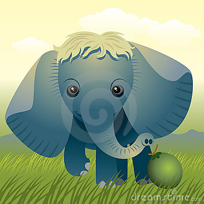 De Dierlijke inzameling van de baby: Olifant