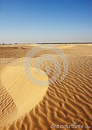 De duinen van het zand in de Sahara
