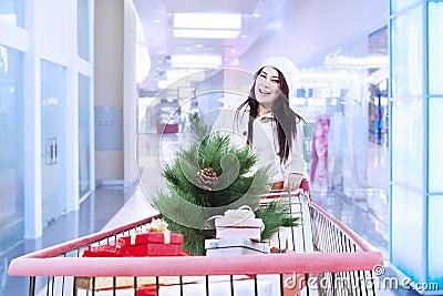 De duw van de vrouw het winkelen karretje met Kerstmisboom