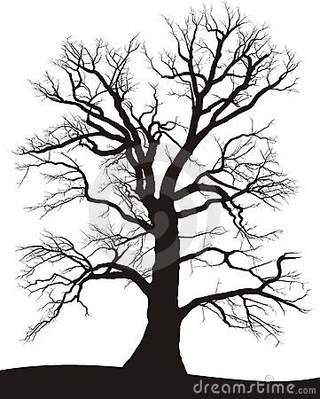 De Eiken zomer van de boom