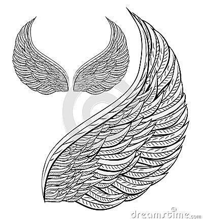De engel van de vleugel