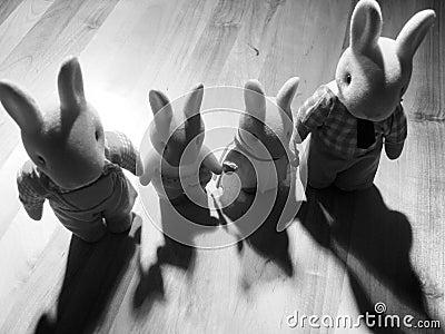 De familie van het konijn