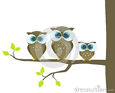 De familie van uilen