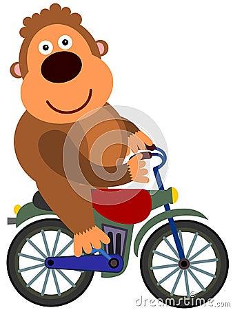 De fiets van de gorilla