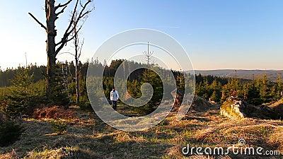 De gang van de jonge mensenwandelaar in aardig landschap bij zonsopgang van voorzijde stock footage