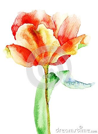 De gele bloem van de Tulp