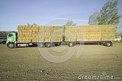 De geparkeerde vrachtwagen laadde met keurig gestapelde hooibalen Redactionele Stock Foto