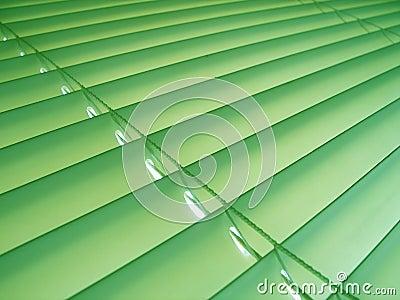 De groene Zonneblinden van de Pastelkleur