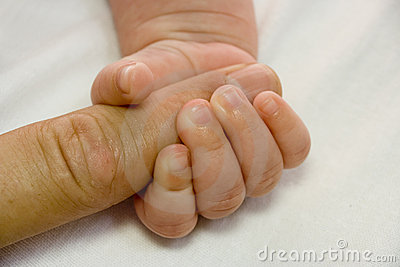 De hand van de baby en ouderwapen