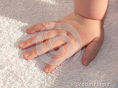 De hand van de baby - zuigelingshand