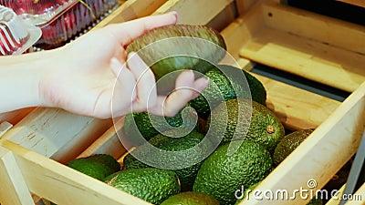 De hand van vrouwen kiest voor avocado op een plank met exotische vruchten op de markt en neemt het in close-up stock videobeelden