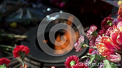 De herdenkings eeuwige vlam en de bloemen, sluiten omhoog stock videobeelden