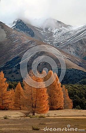 De herfst in Alpen 1