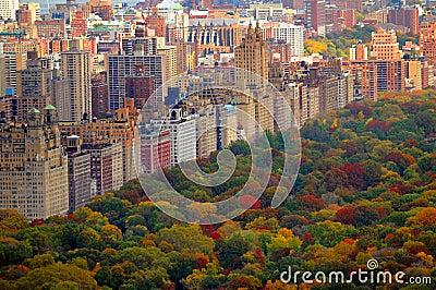 De herfstscène van het Central Park