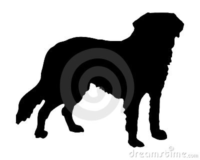 De hond van de sint-bernard
