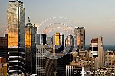 De Horizon van de Stad van Dallas in Avond