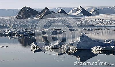 De ijsschol die van het ijs op bergen lijkt