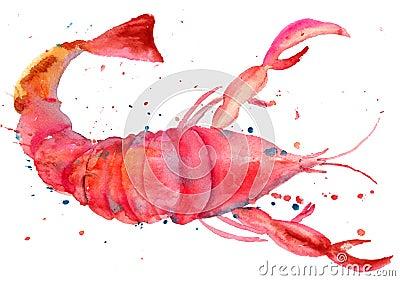 De illustratie van de waterverf van zeekreeft