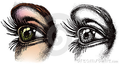 De illustratie van het oog