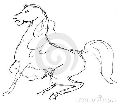 De illustratie van het paard