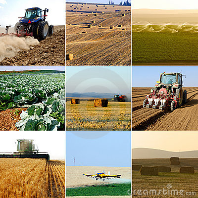 De inzameling van de landbouw
