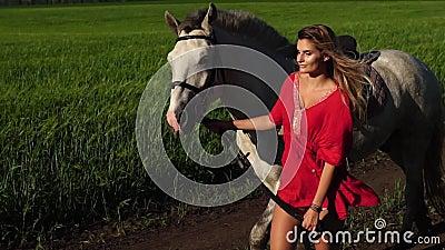 De jonge mooie gang van het vrouwenlood met een wit paard op het groene gebied stock videobeelden