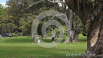 De jongeren speelt Croquet in Cornwall park Auckland Nieuw Zeeland stock footage