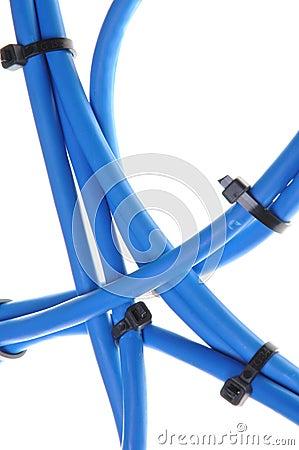 De kabels van het computernetwerk