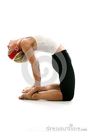 De kameel van de yoga stelt