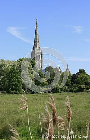 De Kathedraal van Salisbury