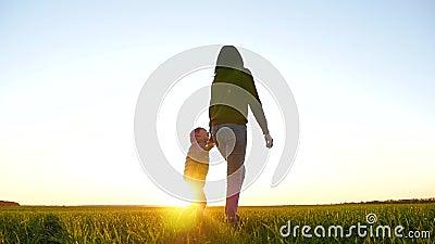 De kleine jongen glimlacht en kijkt naar zijn moeder Moeder en kind lopen over een groene weide tegen de zonsondergang stock videobeelden