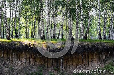 De klip van de rivier