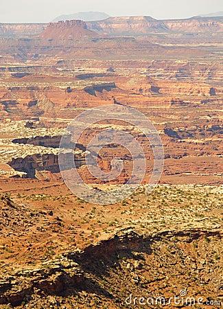 De klippen van Canyonlands en van mesa