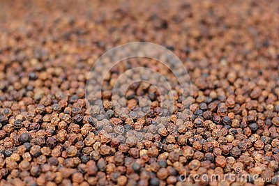 De Korrels van de peper